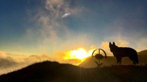 Hund mit Kreuz bei Sonnenuntergang